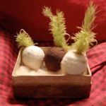 Rare Late 19th C Cotton Batting Miniature Turnips